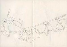 Glauce Cerveira Sketchbook A5-06, 02: Flowering branch Line drawing, pencil