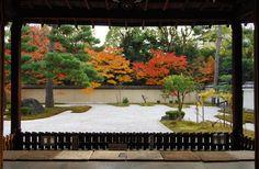 廬山寺 紅葉の源氏の庭 Asian Garden, Chinese Garden, Japanese Landscape, Japanese Gardens, Garden Forum, Japanese House, Japanese Style, Zen Garden Design, Garden Images