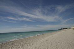 Venice Florida Beaches