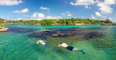 Que en tu viaje a Cancún y a la Riviera Maya vivas nuevas experiencias llenas de naturaleza, aventura y fiesta.