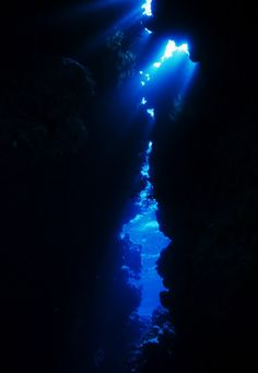 """all i could think is """"something is telling me we should swim through it, not over it"""""""