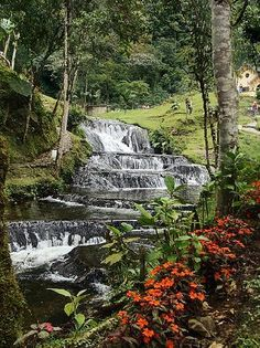 Mixed reviews abound but the termales are phenomenal (if you can live through the food) and be sure to visit those just up the road for the 12 waterfalls cascading all around at Hotel Termales  Santa Rosa de Cabal. #MyTripAdvice