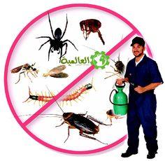 رش مبيدات - http://alaamiah.com/%D8%B1%D8%B4-%D9%85%D8%A8%D9%8A%D8%AF%D8%A7%D8%AA.php