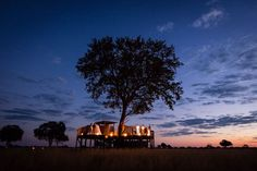 Sleep out under the stars . with just the sound of Hwanges nightlife beneath you ! Wilderness, Night Life, Safari, Trail, Wildlife, Africa, Explore, Adventure, Sunset
