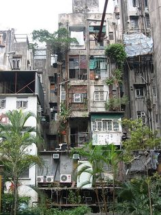 Hong Kong old flats - Städte - Bilder - Architecture Kowloon Walled City, Environment Concept, Slums, Abandoned Places, Abandoned Castles, Facade, Beautiful Places, Beautiful Scenery, Around The Worlds