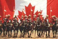 Horse Racing - Assiniboia Downs - Simulcast Racing, VLTs, Dining, Feel The Rush!