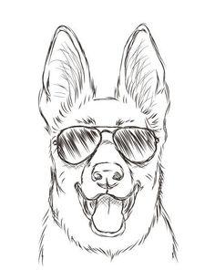 Собака в окулярах Hart