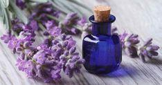 10 dovodov preco prestovat levandulu - caj, kupel, provensalske konrenie ... Lavender essential oil 09302017 min.jpg