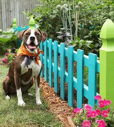 This simple garden fence is short and easily constructed with a few lengths of lumber. But the feature to look at is the playful use of color. If you want to add some character to your garden with minimal effort, then pick 2-3 of your favorite bright colors and have fun painting the fence.