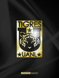 Tigres sombrio