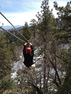 Ziplining in California with Navitat | Savvy Sassy Moms