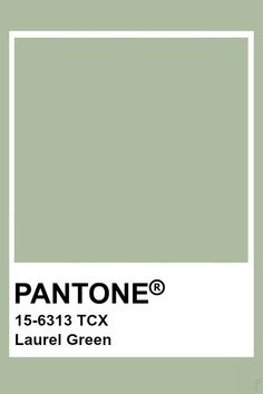 Untitled Pantone Swatches, Color Swatches, Pantone Colour Palettes, Pantone Color, Colour Pallete, Colour Schemes, Colour Trends, Vert Pantone, Palette Verte