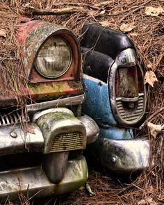 Rusted #Cars slipping away. #Classic #Nature #RustinPeace