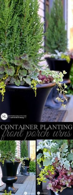 Container Plantings | Front Porch Urns - #biglotsoutdoor #ad #container #garden #ideas