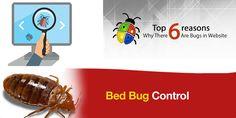 TechBit Infotech | Page 2 of 2 |