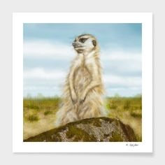 Discover «On the lookout», Numbered Edition Fine Art Print by Karin Spijker…