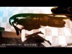 【大合唱】ブラック★ロックシューター【最終版】