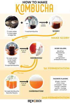How to Make Kombucha (A Beginners Guide!) Ever wondered how kombucha – the deliciously fizzy fermented tea – is made? We're breaking down the basics of how to make kombucha, from start to finish! No fancy equipment or ingredients needed. Kombucha Bottles, Kombucha Scoby, How To Brew Kombucha, Kombucha Fermentation, Fermented Tea, Fermented Foods, Kombucha Benefits, Kombucha Flavors, Fermentation Recipes