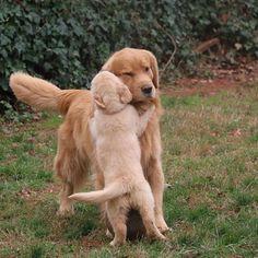 Hugs for Mom...