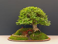 Bilbo Baggins' Home from 'Lord of the Rings' Recreated With a Bonsai