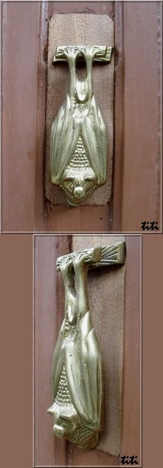 Bat Door Knocker. Serrière, Ardèche (France).
