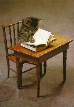 écolier studieux