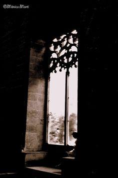 7/365-Leyendo en la ventana©MonicaMarti