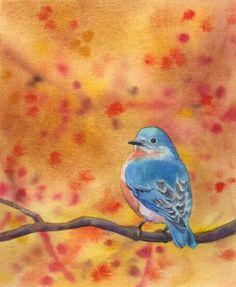 EASTERN BLUEBIRD watercolor bird painting -- Barbara Fox