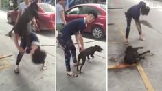 Chinese man pounds dog with a stick until it passed away for losing fight! Hate People, Cruel People, Horrible People, Stop Animal Cruelty, Dog Fighting, Animal Welfare, Animal Rights, Animal Rescue, Sick