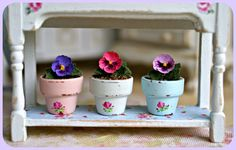 Tiny pansies in very cute shabby pots.