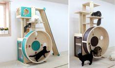 Amazing Cat Wheel Tree
