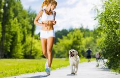 Tips for Running with Your Dog