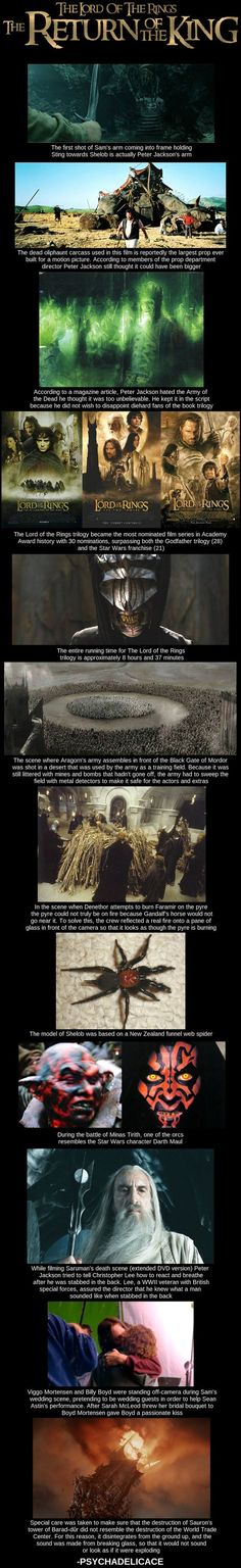 Random Lord of the Rings : The return of the king behind the scene