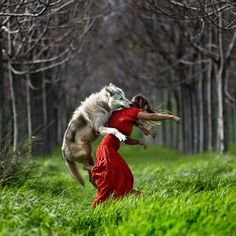 i dont know why I like this.....litlle red riding hood?