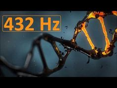 With advances in genomics, scientists are discovering additional components of the DNA alphabet in animals. Do these unusual chemical modifications of DNA have a special meaning, or are they just signs that cellular machines . Molecular Biology, History Projects, Weird Science, New Earth, Genetics, Research, In The Heights, Evolution, Fitness