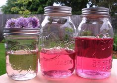 Chive Blossoms in Booze or Vinegar?