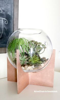 Make Your Own Plywood Cross-Based Globe Terrariums-remodelaholic.com