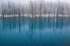 El fotógrafo Kent Shiraishi ha inmortalizado los diferentes colores de este estanque japonés. Según el tiempo que haga, el color del agua cambia de un color a otro.Fluye, claro. Vía | Design Taxi…