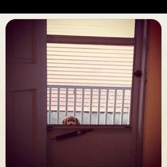 Peeking..