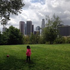 How should we determine the park needs of communities? How do we figure out whether a city is park-rich or park-poor?