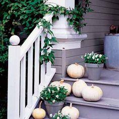 White pumpkins on the porch