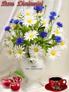 Good Morning, Beauty, Bom Dia, Beleza, Buen Dia, Bonjour, Cosmetology, Buongiorno