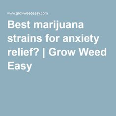 Best marijuana strains for anxiety relief? | Grow Weed Easy