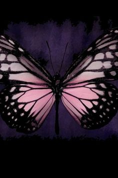 Pink butterfly #patternpod #beautifulcolor #inspiredbycolor