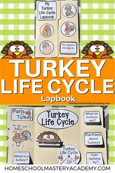 Turkey Life Cycle Lapbook for early learners and elementary. These are great for life cycle studies and Thanksgiving activities! #homeschool #lapbook #lifecycle #homeschoolcurriculum Homeschool Curriculum Reviews, Homeschool Books, Homeschool High School, Homeschool Kindergarten, Homeschooling, Fun Fall Activities, Thanksgiving Activities, Thanksgiving Crafts, Turkey Facts
