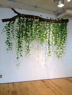House Plants Decor, Plant Decor, Hanging Plants, Indoor Plants, Reggio Inspired Classrooms, Jungle Theme, Classroom Decor, Classroom Ceiling Decorations, Bedroom Decor