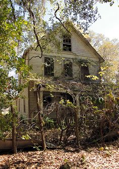 Abandoned house in Putnam County, Florida.