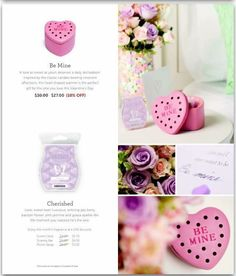 Scentsy Warmer of the Month January 2016!!!