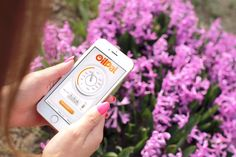 OilPal, monitor your home heating oil levels on the go anytime, anywhere, on any web enabled device! Heating Oil, Monitor, App, Technology, Tech, Apps, Tecnologia