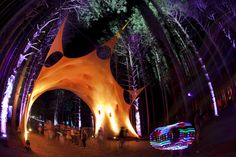 Sherwood Forest. Rothbury MI. electric forest festival.